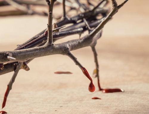 Gebet für die verfolgten Christen am 21.11.20